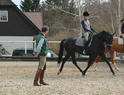 Janna training with Emron and Hans Riegler in Vienna