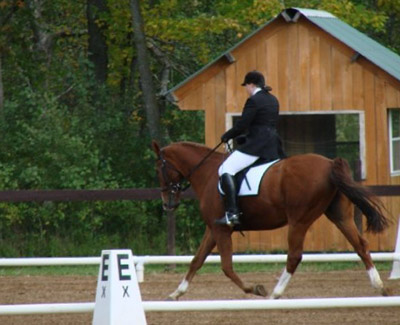 Sally and Vegas perform extended trot. (2009)